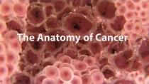 Apa itu kancer?