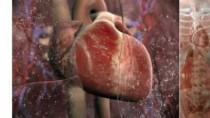 Kegagalan fungsi jantung